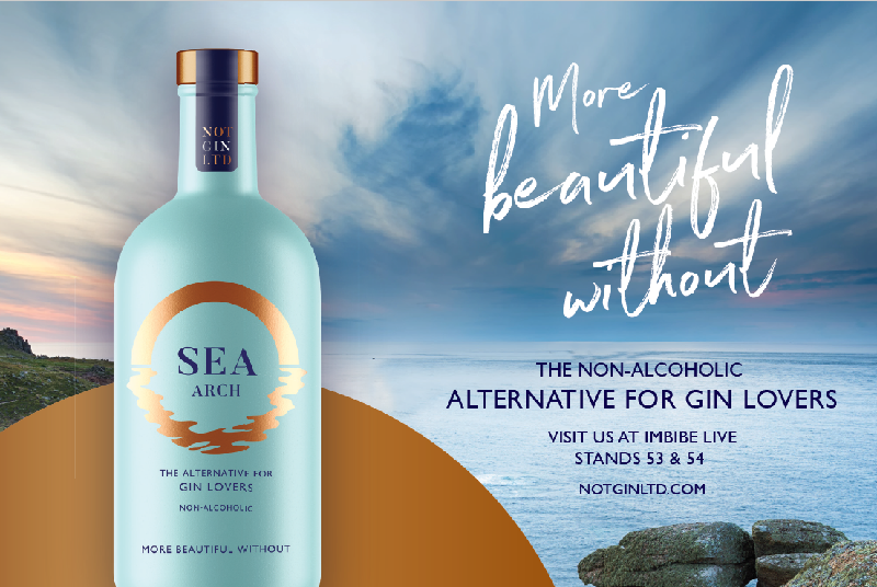 Sea Arch alternative gin